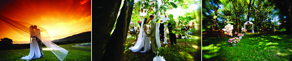 Summerfields-Weddings