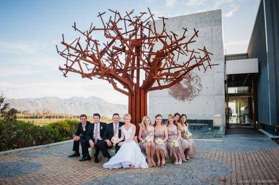 waterkloof_wine_estate_wedding