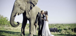 Eastern-Cape-Wedding-Venues