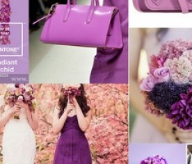 Pantone Colour – Radiant Orchid